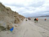 Community Heritage Walk and Beach Clean at Bull Island organised in conjunction with Clean Coasts