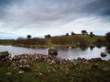 Photo of Lough Lugh, Co Westmeath