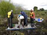 Discovery Programme Staff taking cores from Lough Lugh, Co. Westmeath for environmental analysis. Image shows four staff members standing on a wooden platform and inserting a core into the lake sediments.